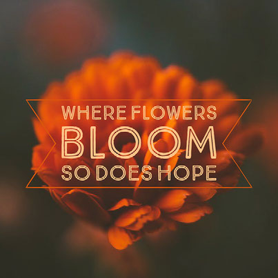 GG Example project: Where flowers bloom so does hope