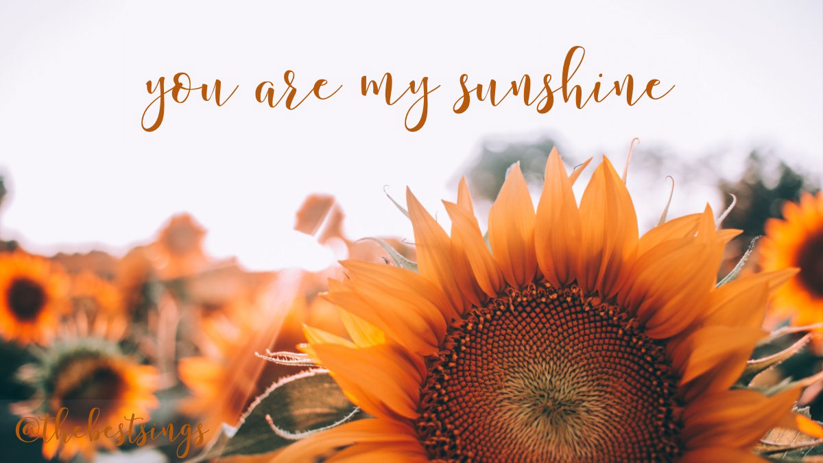 you are my sunshine you are my sunshine<P>@thebestsings