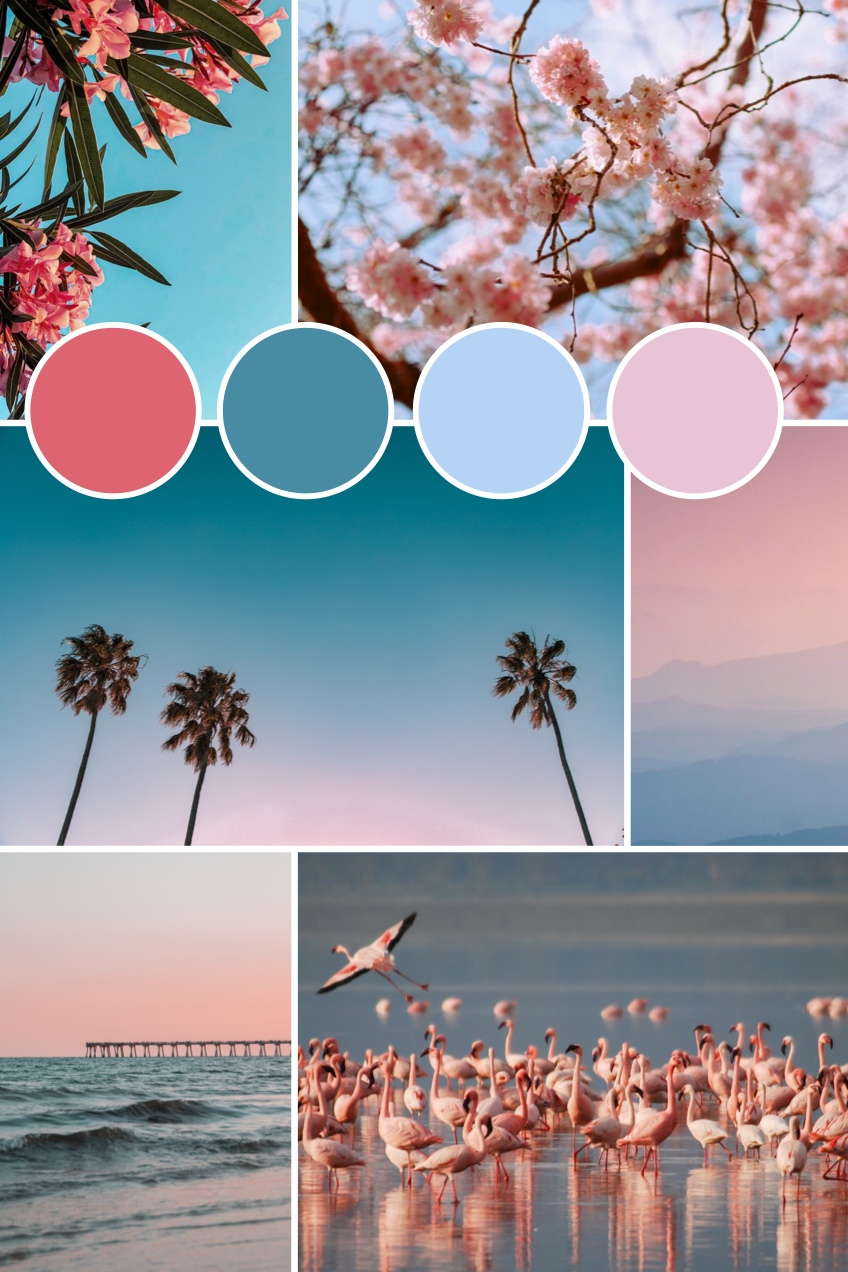 Blue and Pink Pinterest Color Mood Board