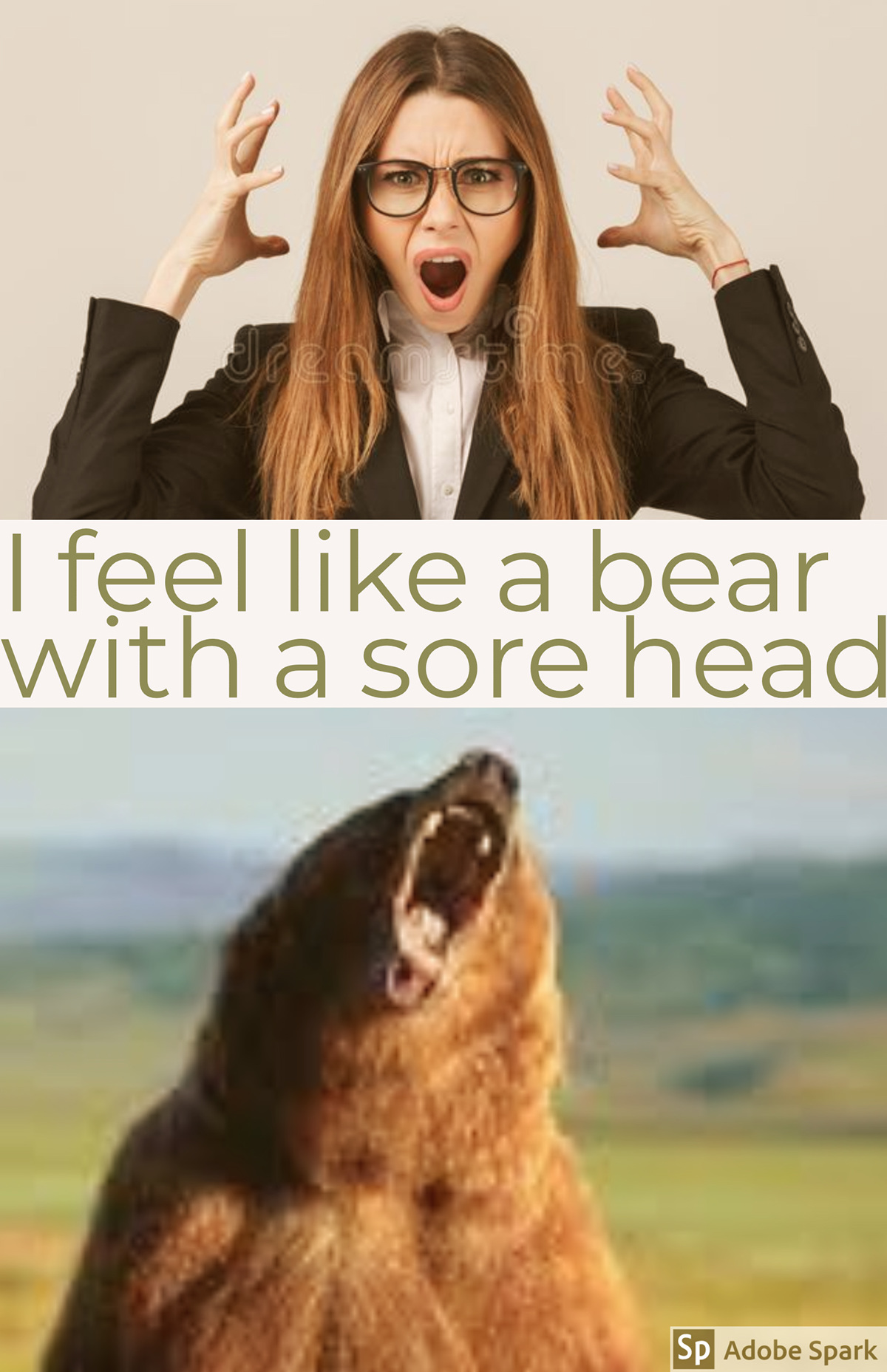 I feel like a bear with a sore head I feel like a bear with a sore head