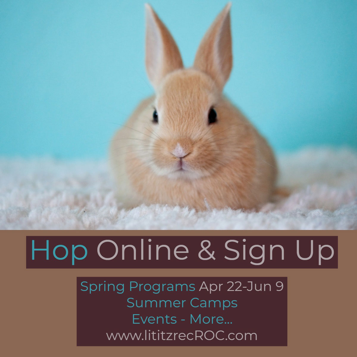 Hop Online & Sign Up Hop Online & Sign Up<P>Spring Programs Apr 22-Jun 9<BR>Summer Camps<BR>Events - More... www.lititzrecROC.com