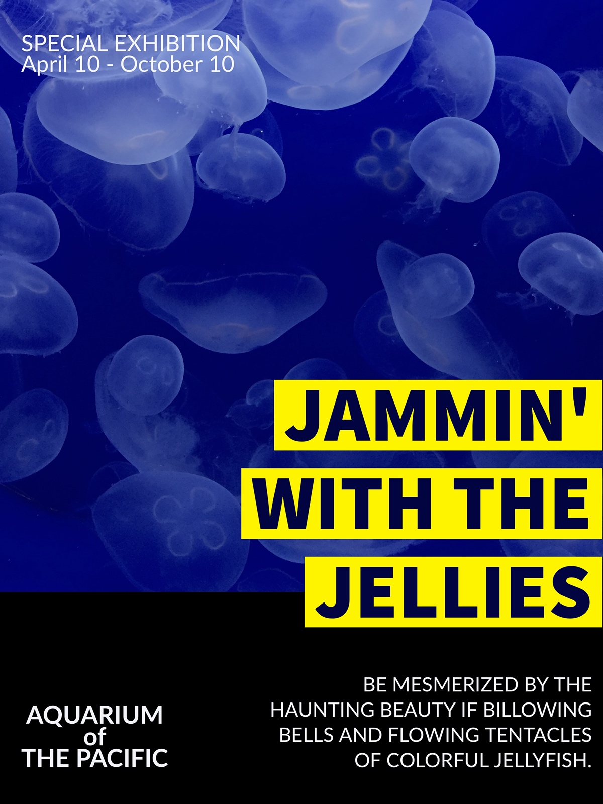 JAMMIN' WITH THE JELLIES JAMMIN' WITH THE JELLIES BE MESMERIZED BY THE HAUNTING BEAUTY IF BILLOWING BELLS AND FLOWING TENTACLES OF COLORFUL JELLYFISH. AQUARIUM of  THE PACIFIC SPECIAL EXHIBITION  April 10 - October 10
