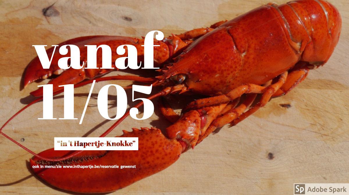 """vanaf 11/05 vanaf 11/05<P>""""in 't Hapertje-Knokke""""<P>ook in menu/zie www.inthapertje.be/reservatie gewenst"""