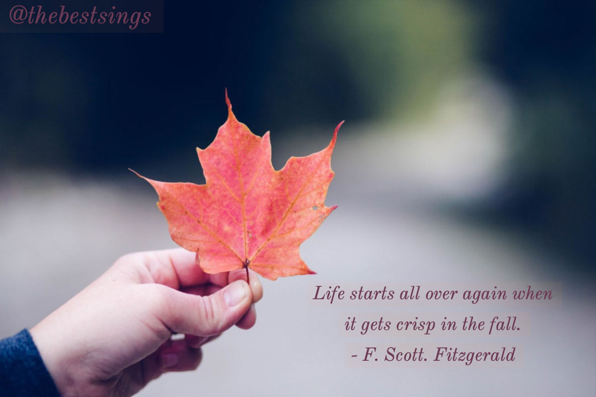 @thebestsings @thebestsings<P>Life starts all over again when it gets crisp in the fall. <BR>- F. Scott. Fitzgerald