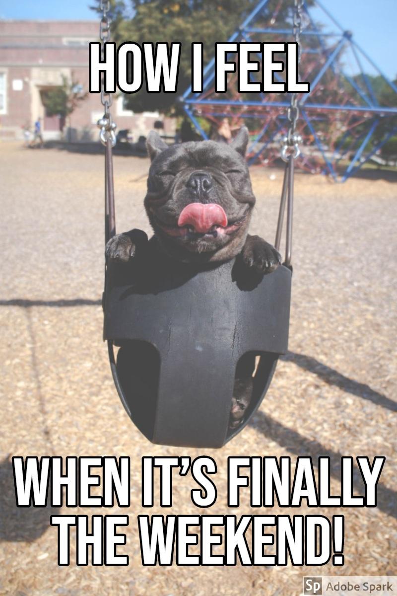 WHEN IT'S FINALLY THE WEEKEND! WHEN IT'S FINALLY THE WEEKEND!<P>HOW I FEEL
