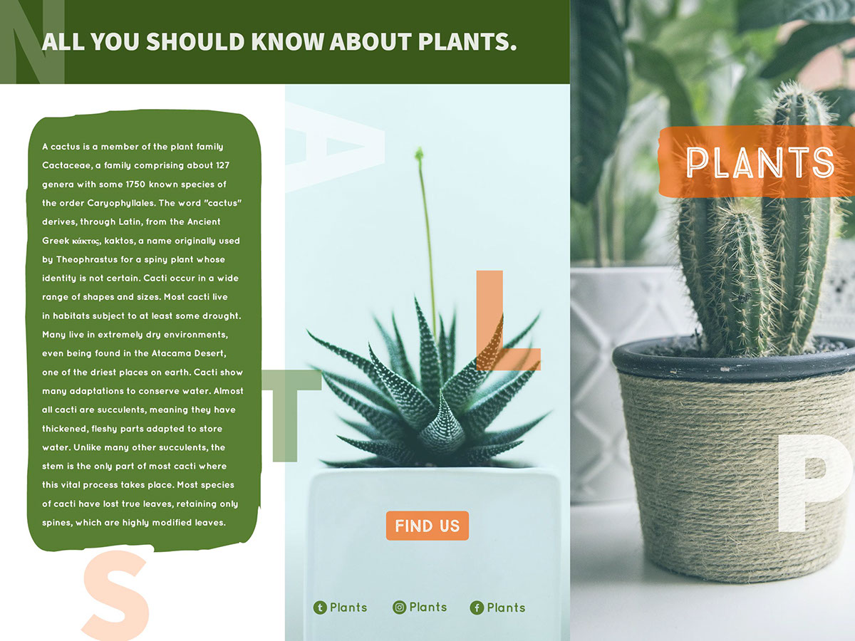Plants Brochure