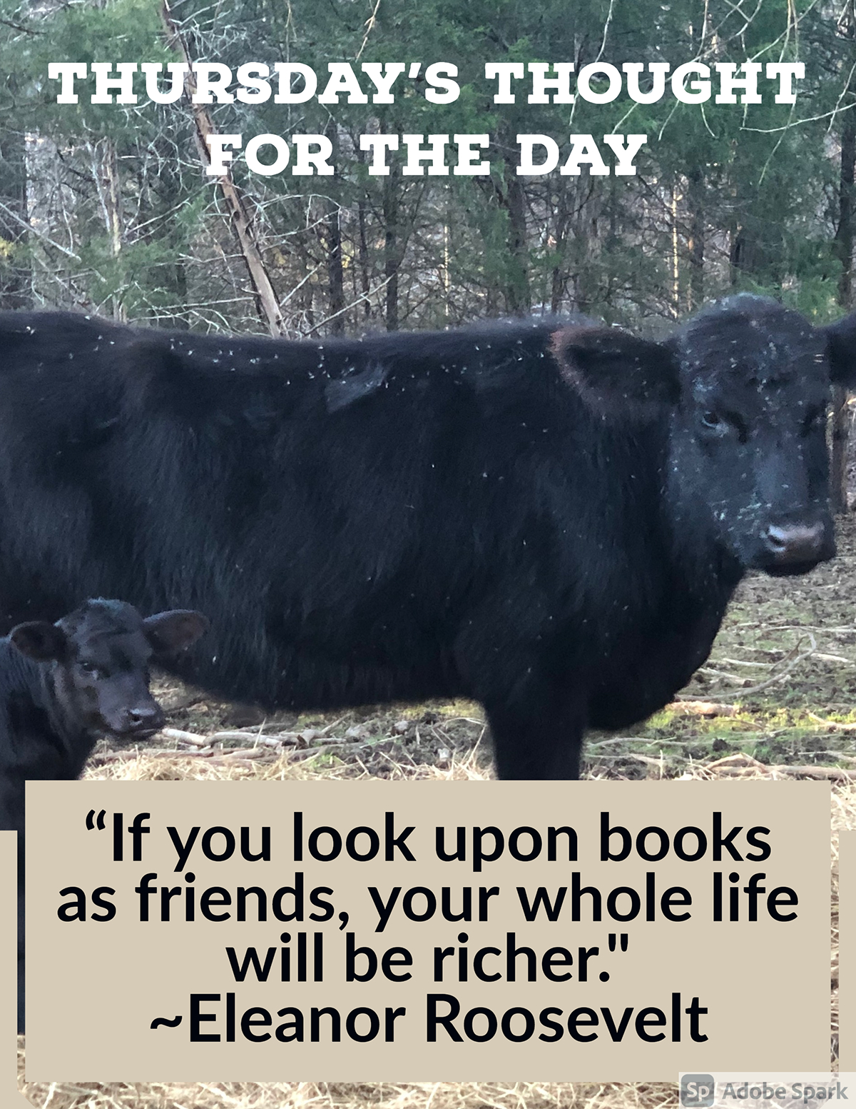 """Thursday's Thought for the Day Thursday's Thought for the Day """"If you look upon books as friends, your whole life will be richer."""" ~Eleanor Roosevelt"""