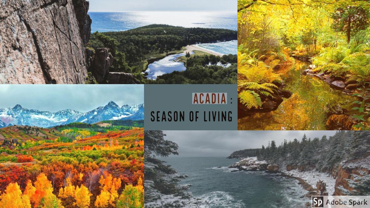 Acadia :<BR>Season of Living<BR> Acadia :<BR>Season of Living<BR>