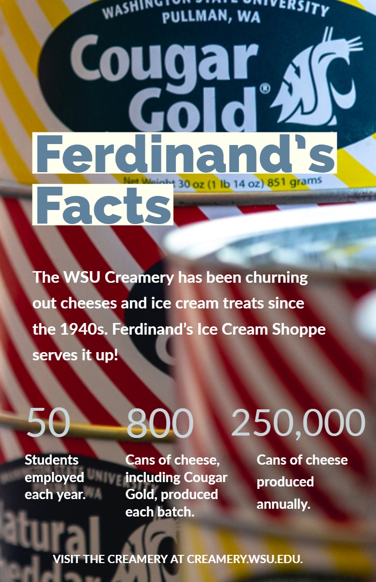 Ferdinand's Facts Ferdinand's Facts<P>50<P>800<P>250,000<P>The WSU Creamery has been churning out cheeses and ice cream treats since the 1940s. Ferdinand's Ice Cream Shoppe serves it up!<P>Students employed each year.<P>Cans of cheese produced annually.<P>Cans of cheese, including Cougar Gold, produced each batch.<P>Visit the creamery at creamery.wsu.edu.