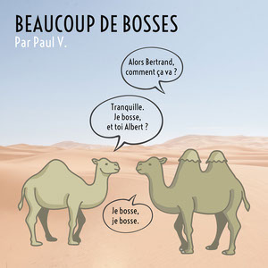 Beige and blue Desert Background Camels Comic Square bandes dessinées