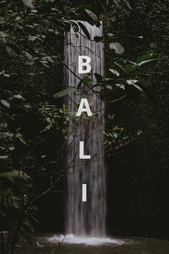 Green Bali Postcard Forest