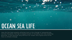 Ocean Sea Life Presentation Slide Ocean