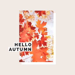 Beige & Autumn Leaves Minimal Instagram Square