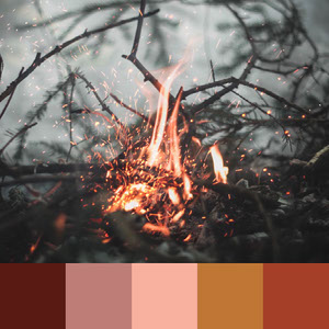 Color Palettes | Earthy 3 101 Brilliant Color Combos