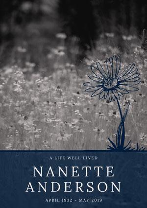 NANETTE ANDERSON Program