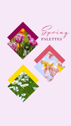 Pink Spring Colour Palettes Instagram Story Spring