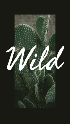 Black Framed, Wild Catchphrase Instagram Story Cactus