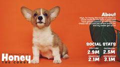 Orange Social Media Corgi Media Kit Social Media Flyer
