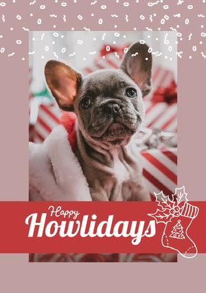 Cute, Framed Dog Portrait Christmas Card Christmas Card