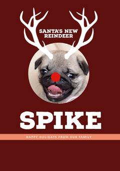 Brown and White Funny Christmas Card Christmas