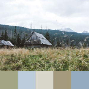 Color Palettes | Earthy 2 101 Brilliant Color Combos