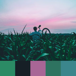 Color Palettes | Earthy 8 101 Brilliant Color Combos