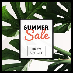 Sale  Sale Flyer