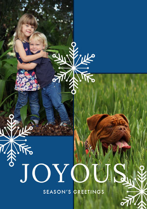 Blue, White and Green Family Christmas Card  Christmas Card