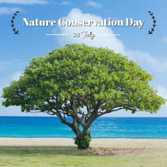 Nature Conservation Day Instagram Post with Tree Nature