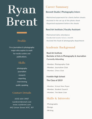 Green and Brown Journalist and Photographer Resume Resume  Examples