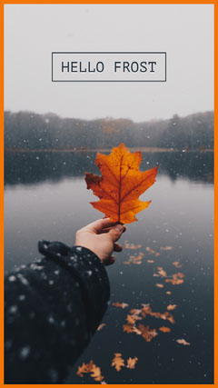 Brown Autumn Winter Season Change Instagram Story with Hand Holding Autumn Leaf Lake