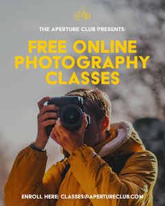 Online Photography Classes Instagram Portrait  Education