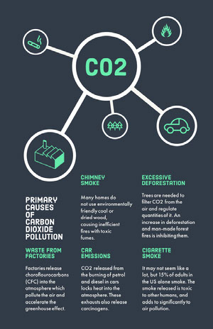 Green and Black Climate Change CO2 Pollution Infographic with Illustrated Graph Infographic Examples
