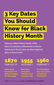 Black History Month Infographic Infografías