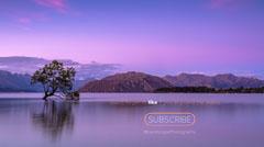 Purple Landscape Photography Animated Youtube Outro Lake