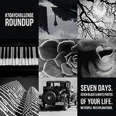 Black And White Seven Day Challenge Roundup Instagram Post  Black And White