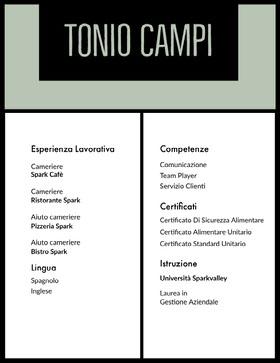 Tonio Campi Curriculum professionale