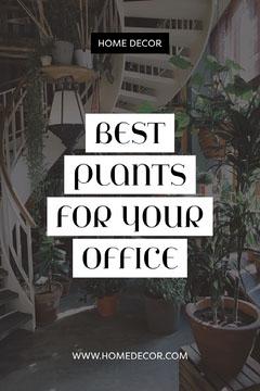 Best Plants For Your Office Pinterest Post Decor