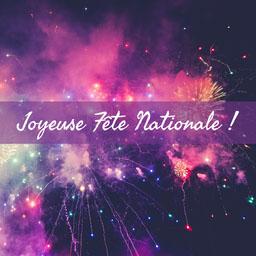 pink purple fireworks bastille day - instagram square