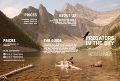Predators in the sky brochure Bird