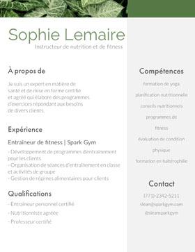 Sophie Lemaire CV professionnel