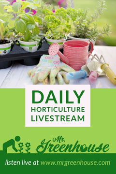 Green and White Potted Plant Photo Horticulture Live Stream Pinterest Post Stream
