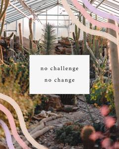 Greenhouse Photo Motivational Phrase Instagram Portrait Graphic Cactus