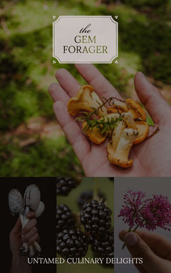 Green With Fresh Ingredients Gem Forager Social Post Forest