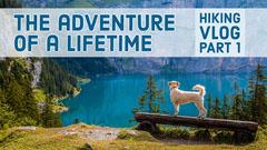 Hiking Vlog Youtube Thumbnail with Dog on Lakeshore Lake
