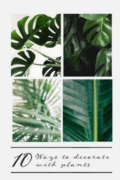 Ten ways to decorate with plants pinterest Garden