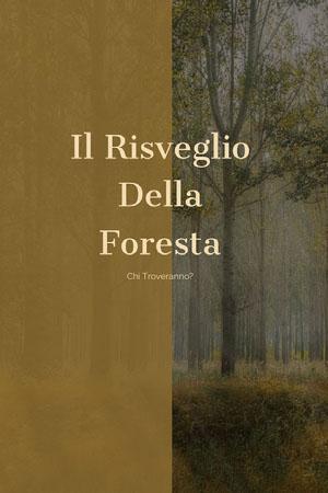 fantasy forest book covers Copertina libro