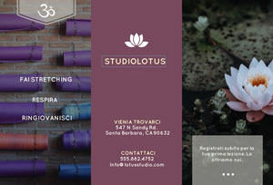 STUDIO LOTUS  Brochure