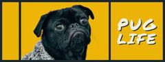 PUG<BR>LIFE Dog Flyer