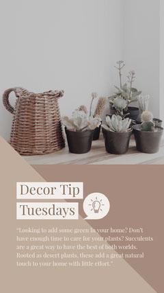 Light, Beige Toned Decoration Tip Instagram Story Plants